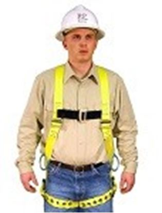 Picture of Full Body Harness Model: 650B
