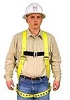 Picture of Full Body Harness Model: 650