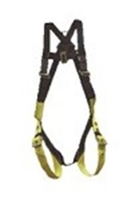 Picture of Universal® TB Harness (1 D-ring)