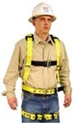 Picture of Full Body Harness Model: 750