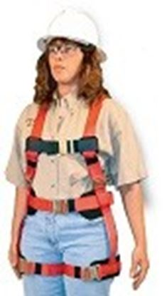 Picture of 872 Female full body harness