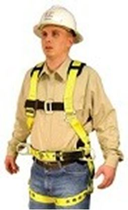 Picture of Full Body Harness Model: 850AB